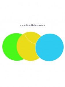 Timid Futures logo